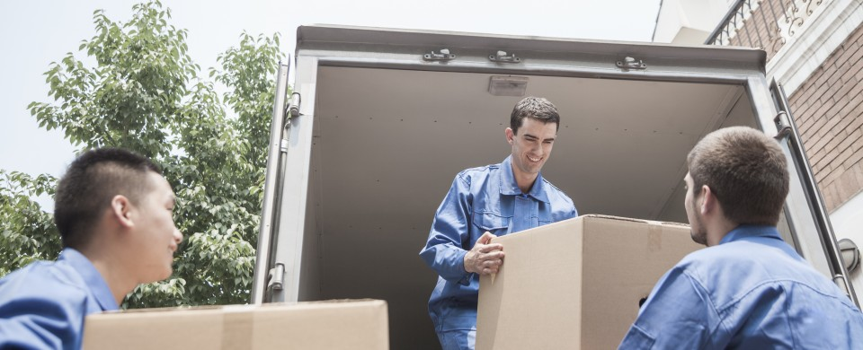 Quotes from moving companies in the US