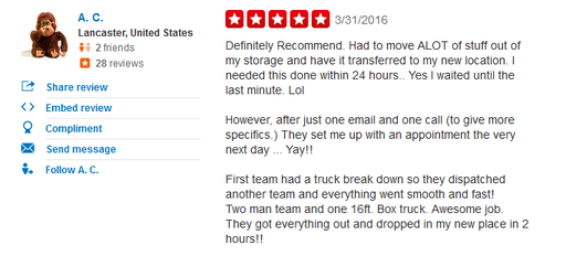 Focus Movers – Moving review