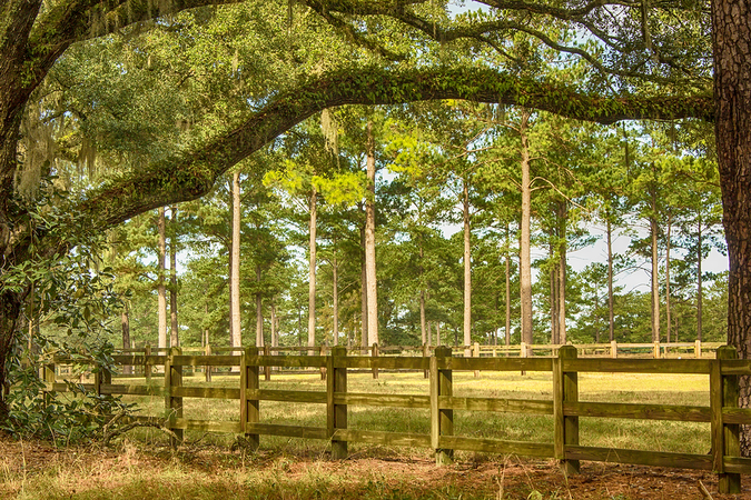 Move to Tallahassee countryside to enjoy a myriad of outdoor recreational opportunities