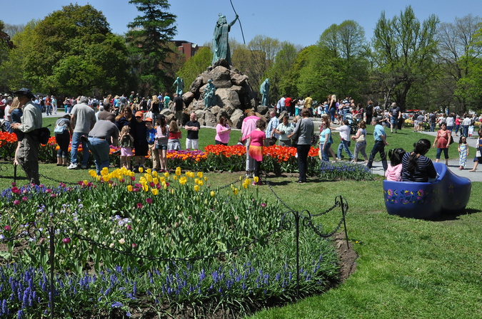 The Annual Tulip Festival in May attracts thousands of visitors to Washington Park, Albany