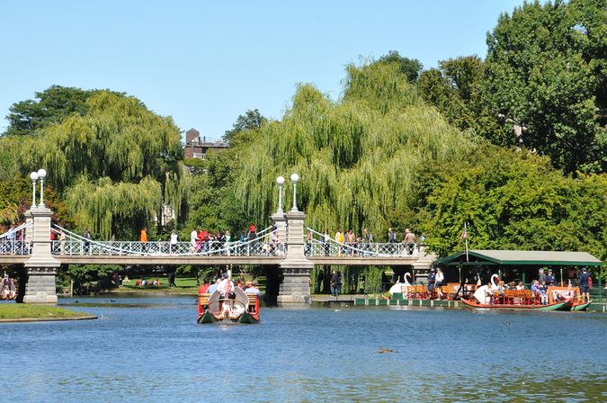 Tourists and locals enjoy swan boats at the Public Gardens