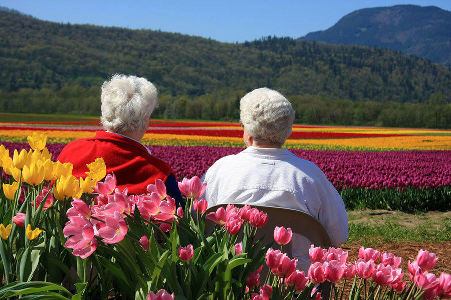 Majority of seniors prefer to move to locations with beautiful scenery and milder weather